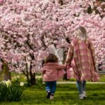 Oggi é la Festa della mamma: quando nasce e perché si celebra la ricorrenza